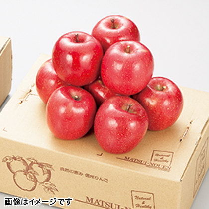 【期間限定】 サンふじ 3.5kg