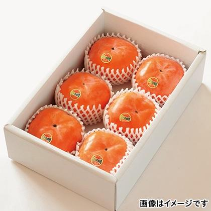 【期間限定】 次郎柿 6個 化粧箱入