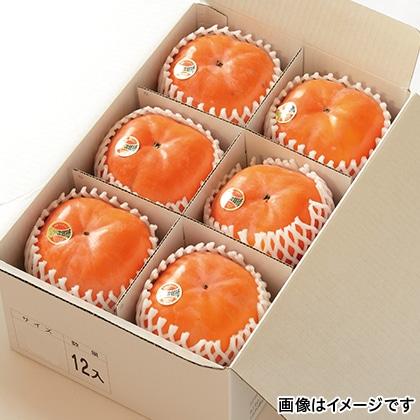 【期間限定】 次郎柿 12個 化粧箱入