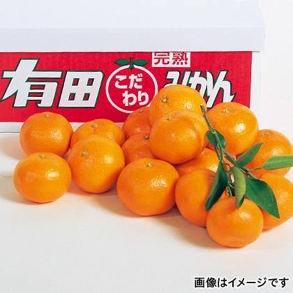 【期間限定】 武内園の有田みかん 7kg
