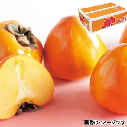 【期間限定】 富士柿 4.5kg