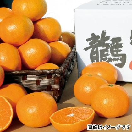 【期間限定】 龍馬感激(R)みかん 3kg