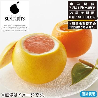 <※お中元対象商品><サン・フルーツ>フレッシュゼリーセット10個