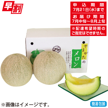 <※お中元対象商品>山形県産庄内メロン(青肉2個)