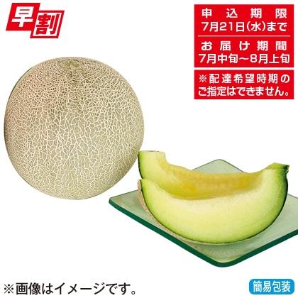 <※お中元対象商品>山形県産庄内メロン(青肉5kg)