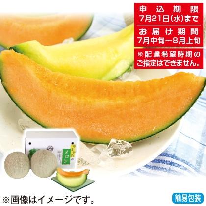 <※お中元対象商品>山形県産庄内メロン(赤・青肉)