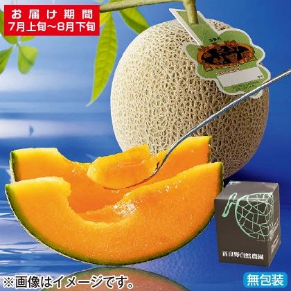 <※お中元対象商品>富良野自然農園メロン 大1個(赤肉)