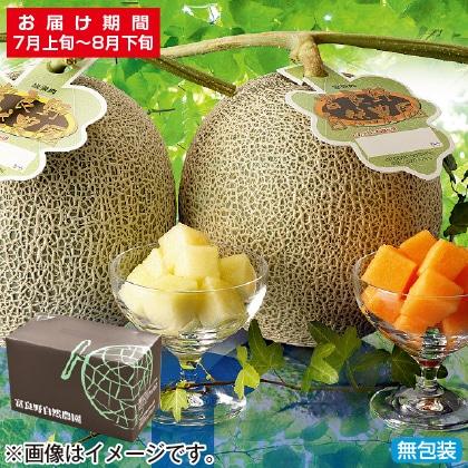 <※お中元対象商品>富良野自然農園メロン 大(赤と緑肉)