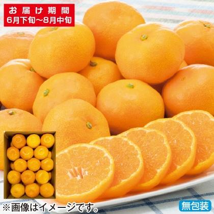 <※お中元対象商品>佐賀県産ハウスみかん 2.4kg