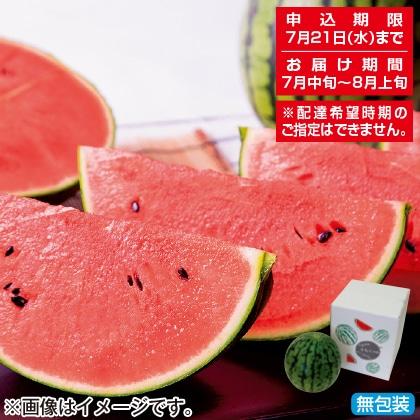 <※お中元対象商品>山形県産 小玉すいか3kg