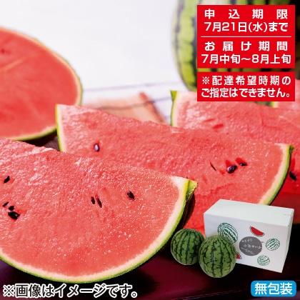 <※お中元対象商品>山形県産 小玉すいか5kg