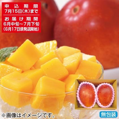<※お中元対象商品>完熟マンゴー
