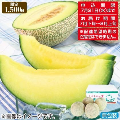 <※お中元対象商品>庄内メロン 優品(青肉5kg)