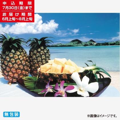 <※お中元対象商品>石垣島産パイン 4.5kg