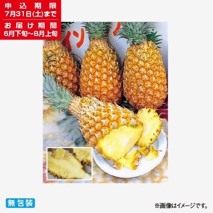 <※お中元対象商品>沖縄県産ボゴールパイン 2kg