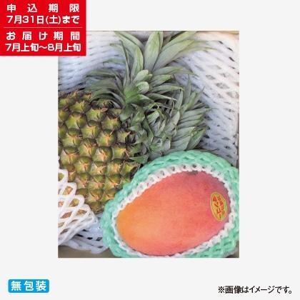 <※お中元対象商品>沖縄県産マンゴーとボゴールパインのセット