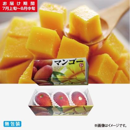 <※お中元対象商品>沖縄県産完熟マンゴー 1kg