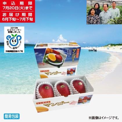 <※お中元対象商品>宮古島産マンゴー 1kg