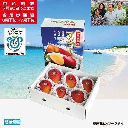 <※お中元対象商品>宮古島産マンゴー 2kg