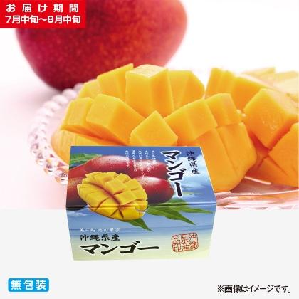 <※お中元対象商品>沖縄本島北部産マンゴー 1kg