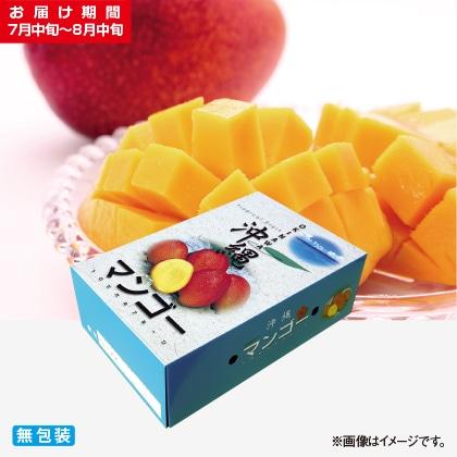 <※お中元対象商品>沖縄本島北部産マンゴー 2kg