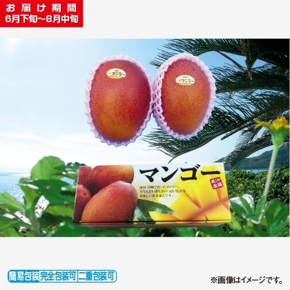 <※お中元対象商品>マンゴー 1kg
