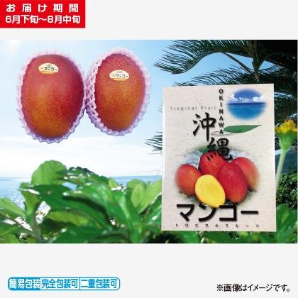<※お中元対象商品>マンゴー 1.5kg