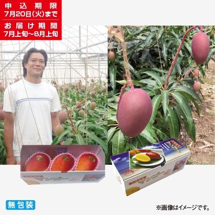 <※お中元対象商品>沖縄県産マンゴー 1kg