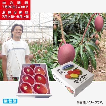 <※お中元対象商品>沖縄県産マンゴー 2kg