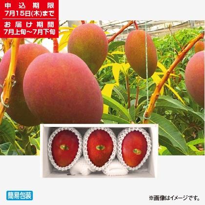 <※お中元対象商品>宮古島マンゴー 珊瑚の恵み 1kg