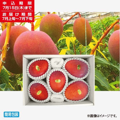 <※お中元対象商品>宮古島マンゴー 珊瑚の恵み 2kg