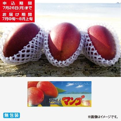 <※お中元対象商品>石垣島完熟マンゴー 1kg