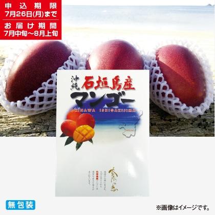 <※お中元対象商品>石垣島完熟マンゴー 2kg