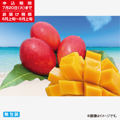<※お中元対象商品>沖縄 燦々マンゴー 1kg