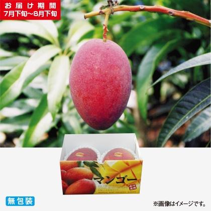 <※お中元対象商品>贈答用マンゴー 850g