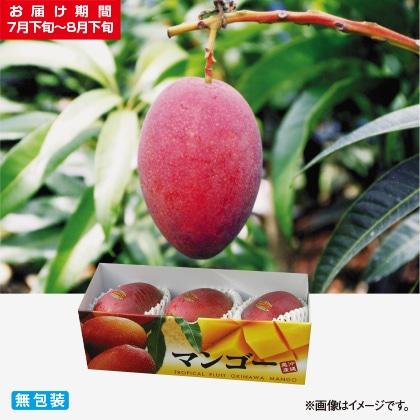 <※お中元対象商品>贈答用マンゴー 1kg