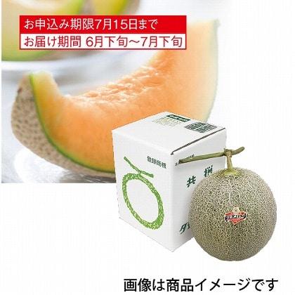 <※お中元対象商品>北海道産 夕張メロン