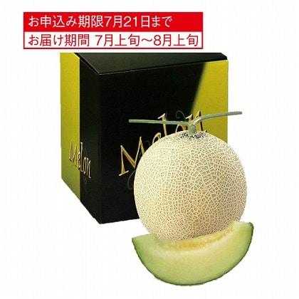 <※お中元対象商品>静岡県産 マスクメロン