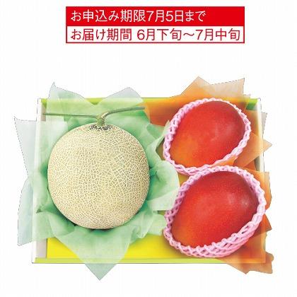 <※お中元対象商品>マスクメロン&マンゴー
