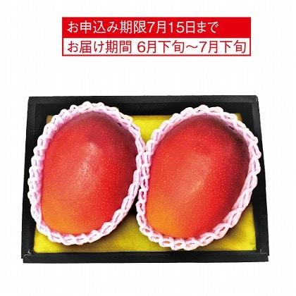 <※お中元対象商品>国産 マンゴー