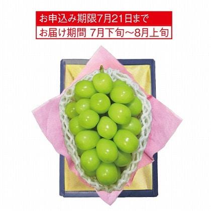 <※お中元対象商品>シャインマスカット
