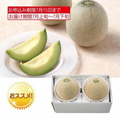 <※お中元対象商品>サン・フルーツ 千葉県産 グリーンメロン