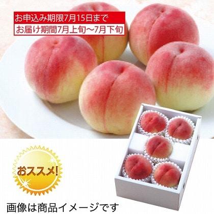 <※お中元対象商品>サン・フルーツ 山梨 桃
