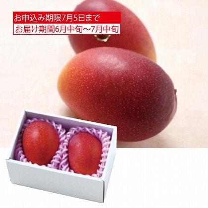 <※お中元対象商品>サン・フルーツ 宮崎 完熟マンゴー