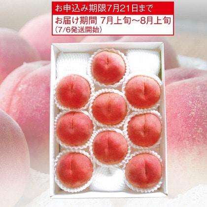 <※お中元対象商品>山梨 旬の桃