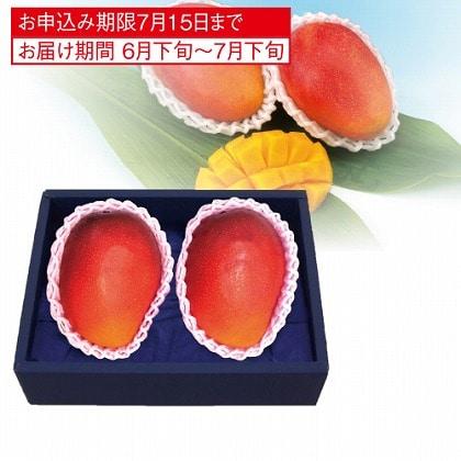 <※お中元対象商品>国産マンゴー