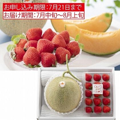 <※お中元対象商品>北海道 夏のイチゴ&赤肉メロン