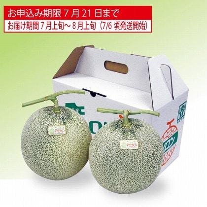 <※お中元対象商品>北海道メロン