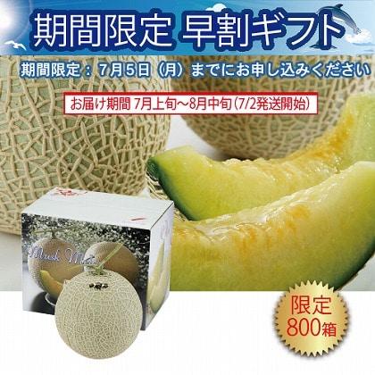 <※お中元対象商品>愛知県産 マスクメロン1個