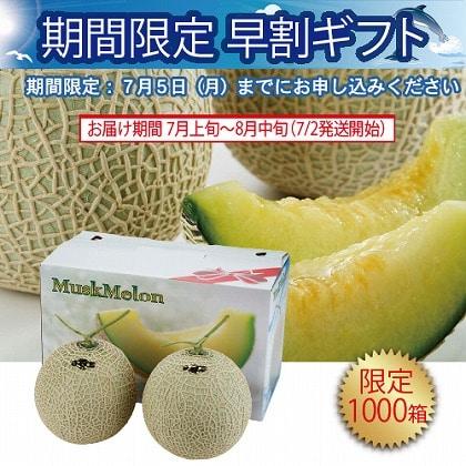 <※お中元対象商品>愛知県産 マスクメロン2個